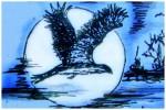 1 uvod toulaví ptáci zvadlo29b - kopie